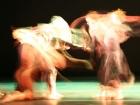 Show 2006